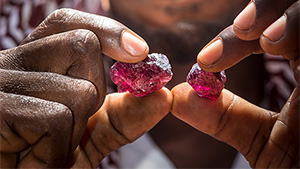 A miner in northern Tanzania examines rhodolite.