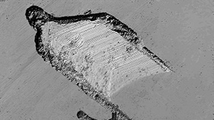 LCM reveals traces of catalyst and step-like growth marks.