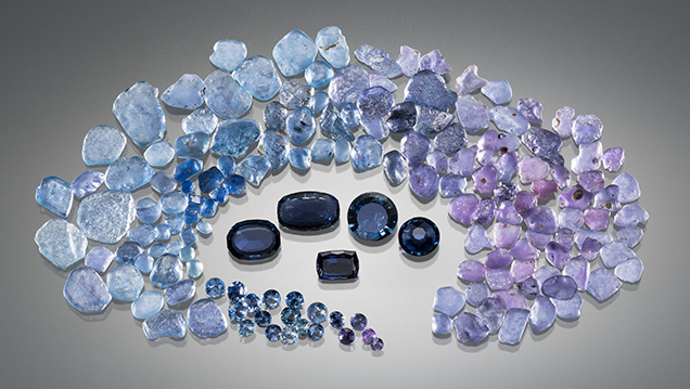 Suite of rough and cut Yogo sapphires showing the wide color range