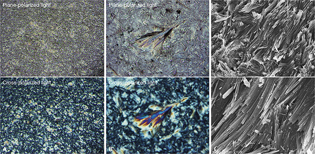 Polarized optical and SEM images of black nephrite from Guangxi