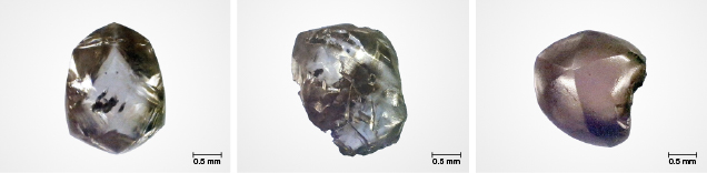 Rough diamonds collected from Crater of Diamonds State Park.