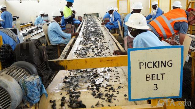 Workers line both sides of a conveyer belt to sort emerald rough that passes by them.