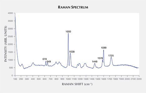 Raman spectrum proves beads are plastic.