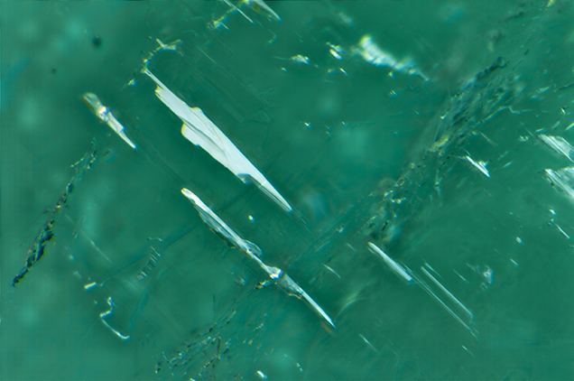Fluid-filled inclusions in Paraíba tourmaline