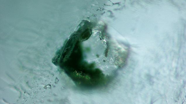 Monazite inclusion in alluvial Montana sapphire