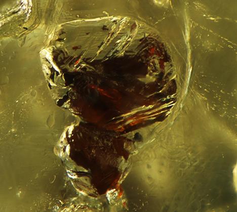 Luster of sphalerite under fiber-optic light.