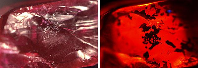 Filler Photomicrographs.