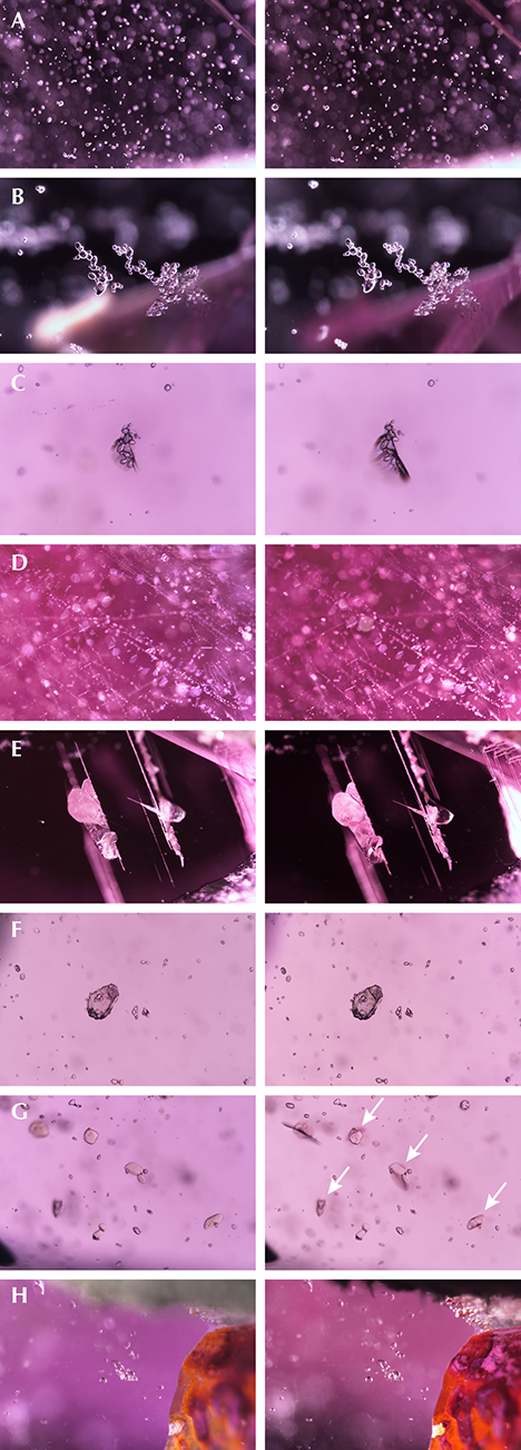 Inclusion scenes in pink sapphire before/after low-temperature heat treatment