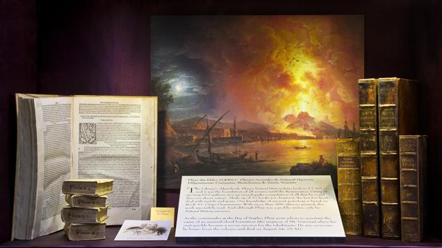 Tablet to Tablet Pliny Exhibit Case