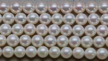 Pearl video thumb