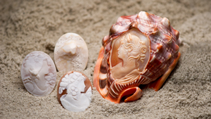 Three smaller cameos show the progression of craving a cameo from rough shell. They sit in sand alongside a shell with a fully carved cameo on it.