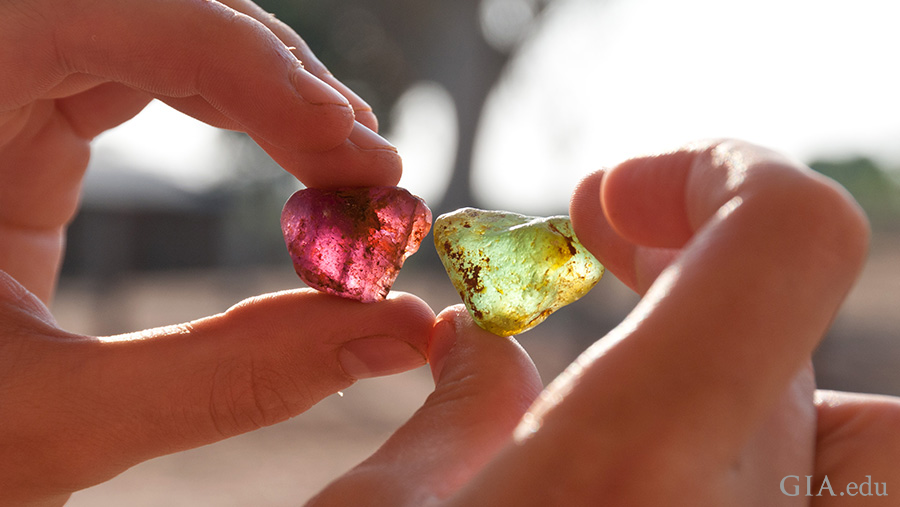 Hands holding purple and green tourmaline rough while visiting the deposit of the October birthstone, near Mavuco village in Mozambique.