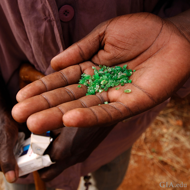 Miner in Voi, Kenya holding a handful of small rough tsavorite garnets, the birthstone for January.