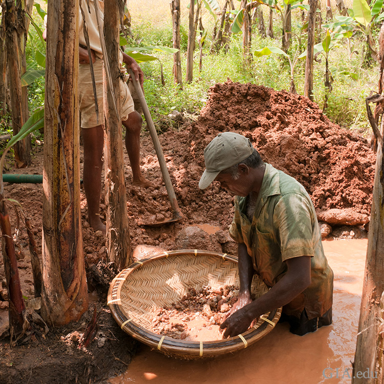 An artisanal miner searches through a basket for the December birthstone, zircon, in a muddy river in the Elahera region of Sri Lanka.
